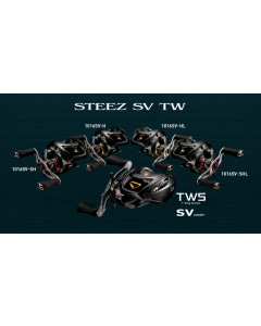 DAIWA 17 STEEZ SV TW 1012SV-XH (Right)