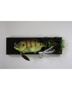 TH TACKLE Little Zoe - #13 Chameleon Gill