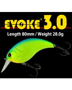 DEPS EVOKE 3.0
