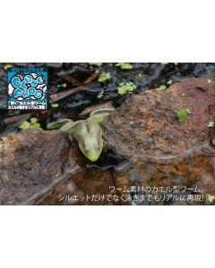 JACKALL Clone Frog