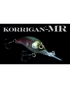 DEPS KORRIGAN MR