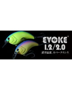 DEPS EVOKE 1.2