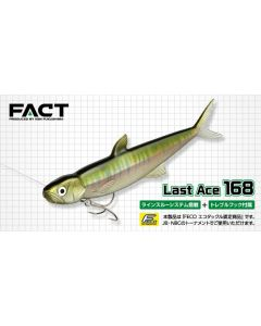 EVERGREEN LAST ACE 168
