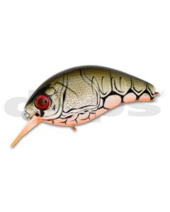 DEPS KORRIGAN MAGNUM 250 # 44 Orange Berry Claw