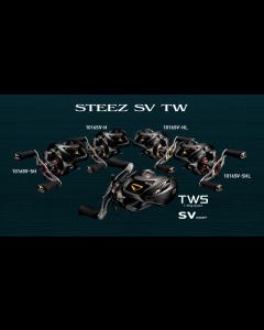 DAIWA 17 STEEZ SV TW 1012SV-XH (Right)